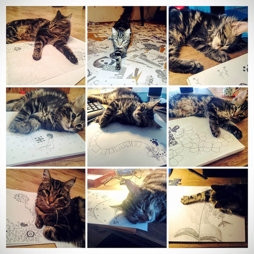 Kitty and drawings