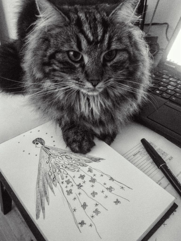 Pässu and drawing