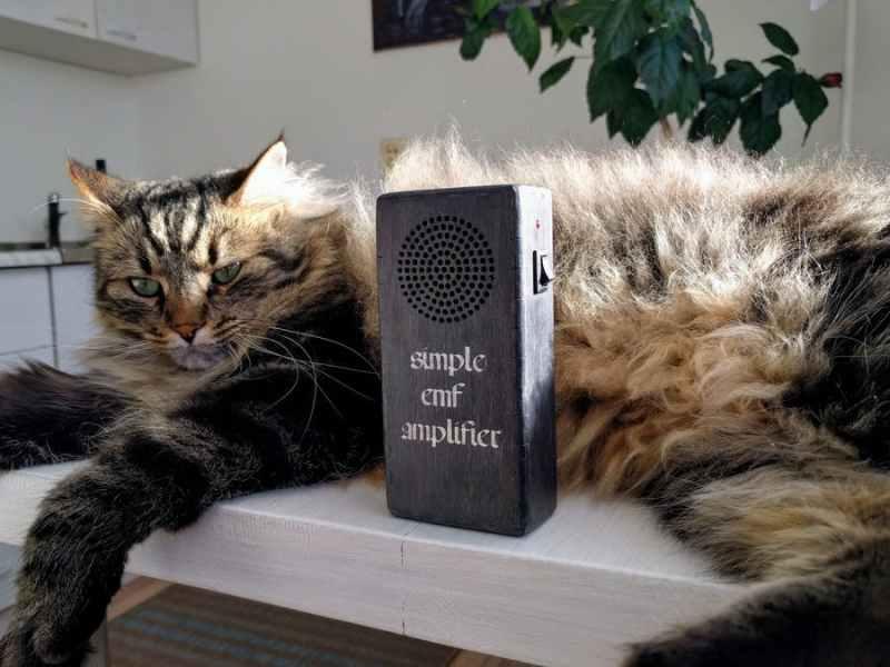 Electromagnetic Field (EMF) Amplifier