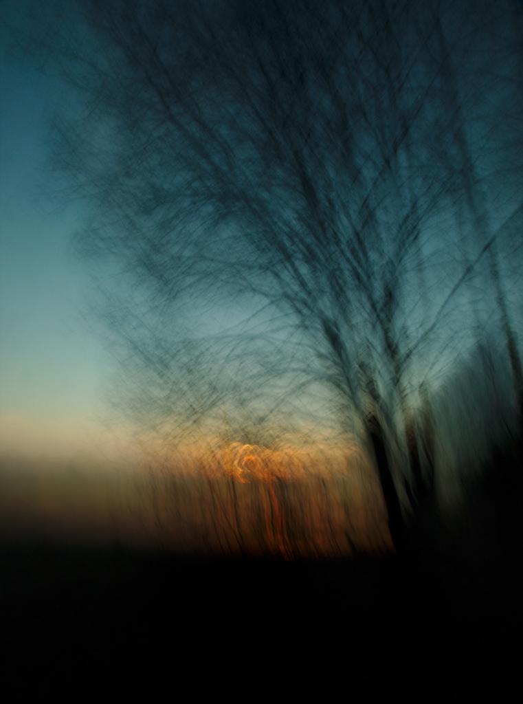 Ärkamine. Photo Tauno Erik