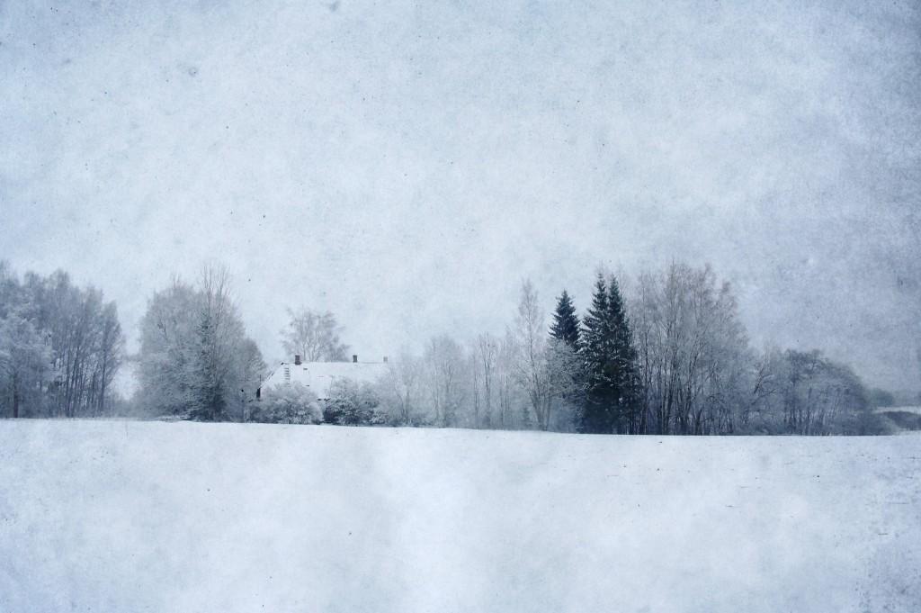 Talv. Photo Tauno Erik