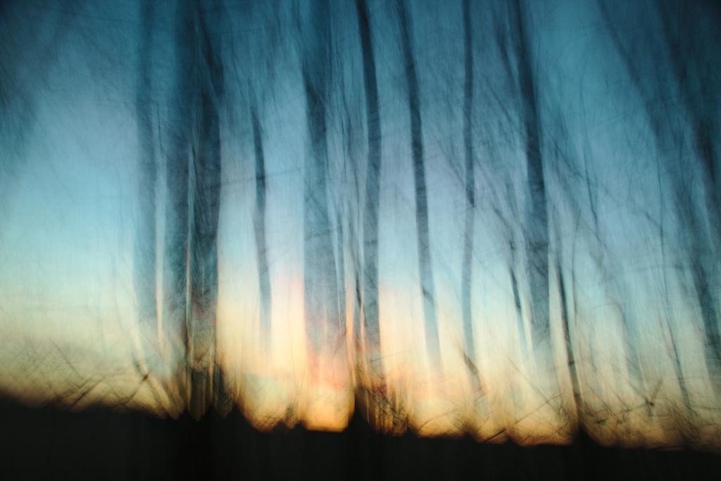 Valgus. Photo Tauno Erik